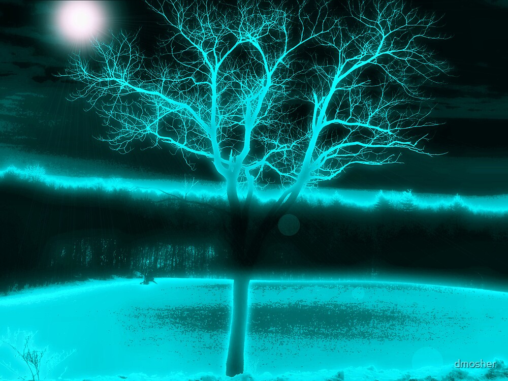 Cold Winters Night by dmosher