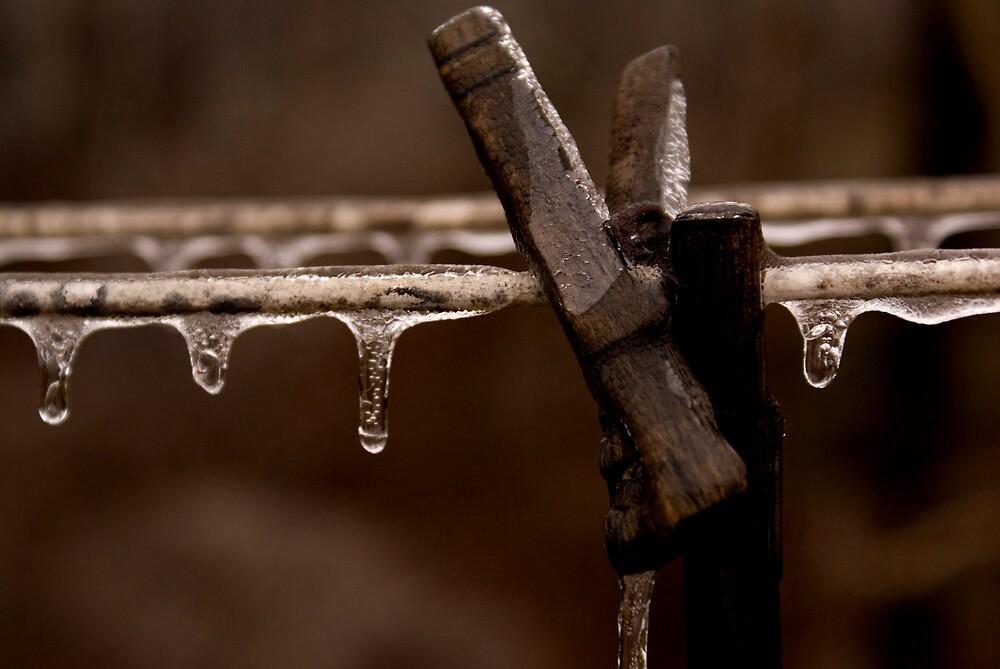 Ice Pins by Rod  Adams