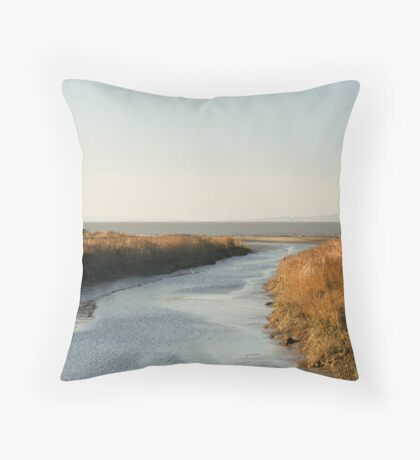 Mouth of Pinole Creek Throw Pillow