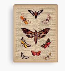 Butterflies on Psalm 91 Canvas Print