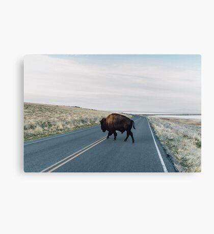 Seldom is Herd Canvas Print