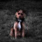 o.k. I'm sitting, now what? by missmoneypenny