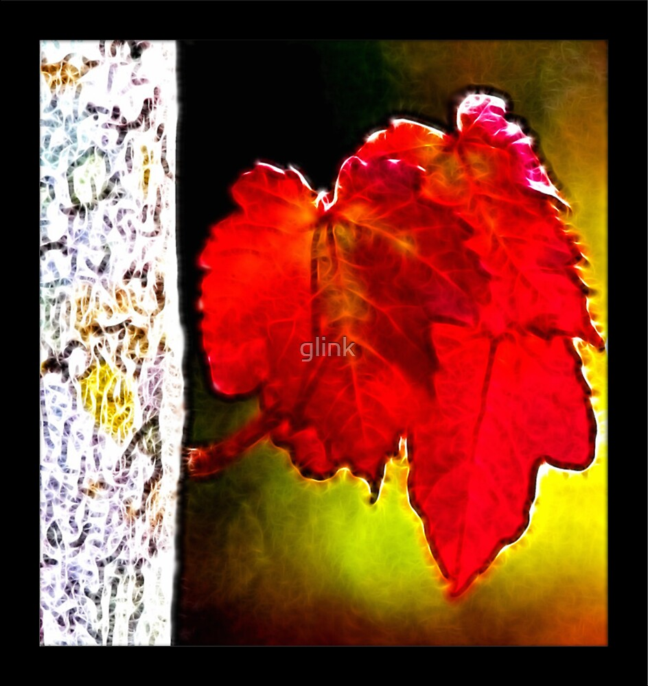 Autumn Leaves by glink