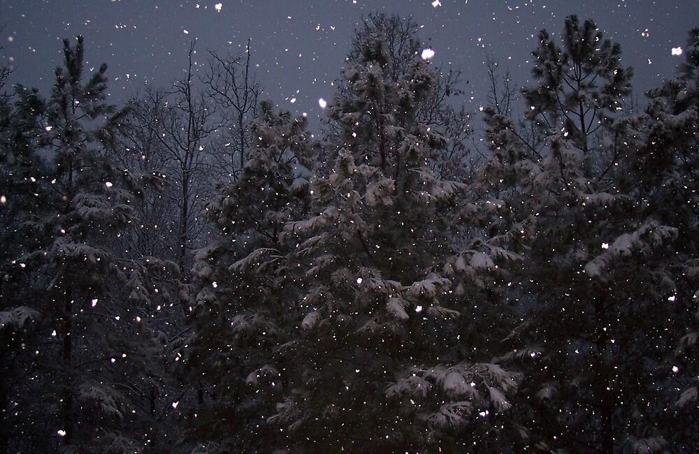 Snowflake by reisalin
