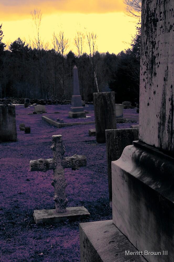 I'll Sleep When I'm Dead by Merritt Brown III