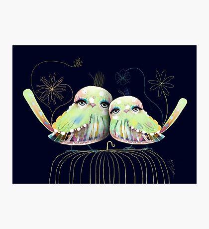 Little Love Birds Photographic Print