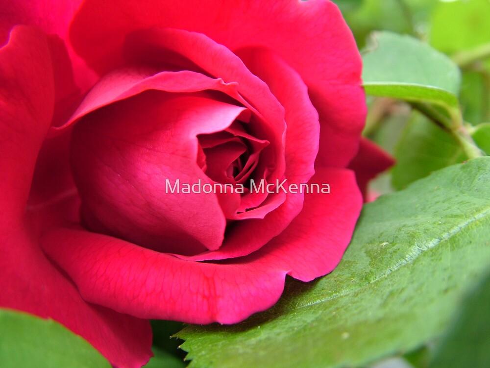 """""""Red"""" by Madonna McKenna"""