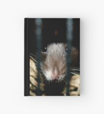 Peeking out of the shadows Hardcover Journal