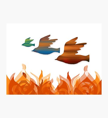 Fire Birds Photographic Print