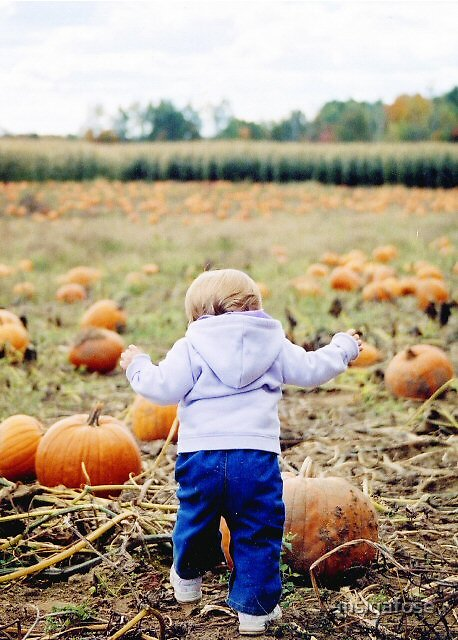 Punkin patch kid by msigafose