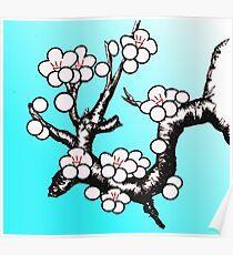 White Sakura Cherry Blossom Vector Design Poster