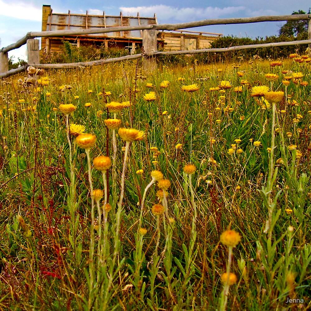 craigs hut through flowers by Jenna