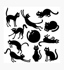 Seamless black cat pattern design Photographic Print
