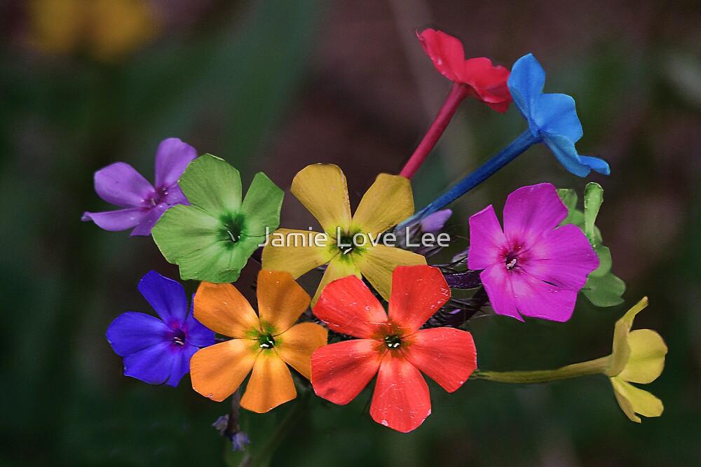 Color Me Wonderful by Jamie Lee