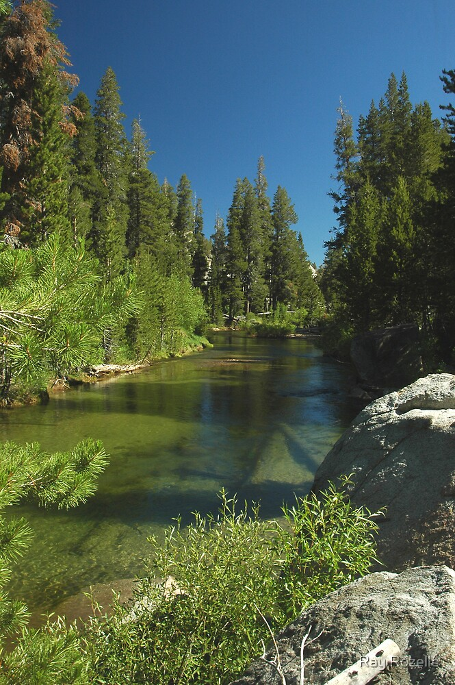 West Walker River / Sonora Pass  by Ray Rozelle