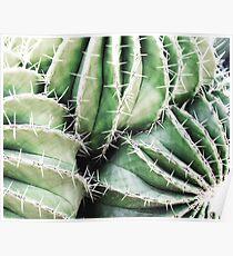 Plant print, Cacti, Cactus print, Scandinavian print, Scandinavian, Trendy print, Styled, Scandinavian art, Modern art, Wall art, Print, Minimalistic, Modern Poster