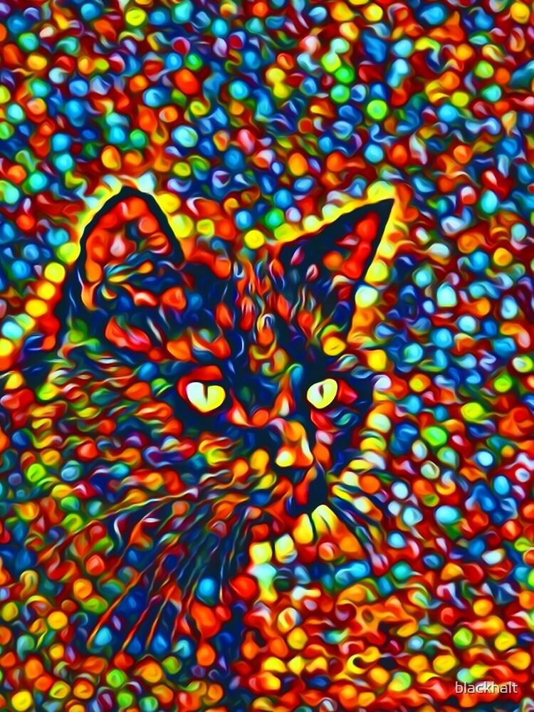 Cat by blackhalt