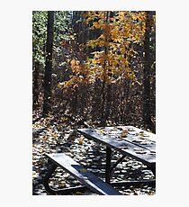 Picnic Table I Photographic Print