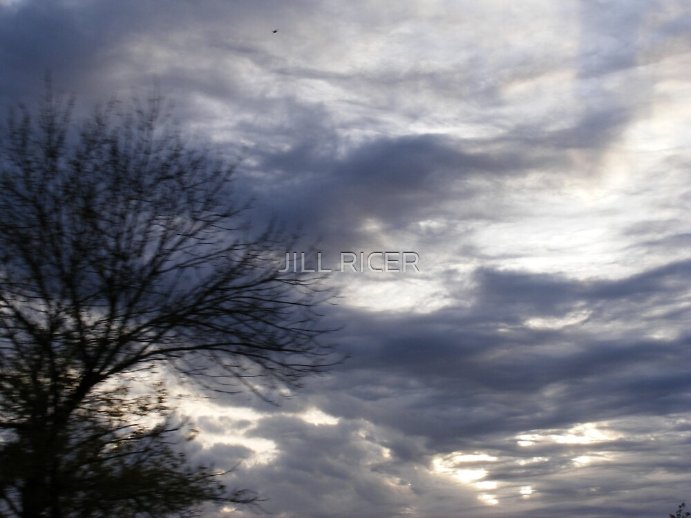 blue day by JILL RICER