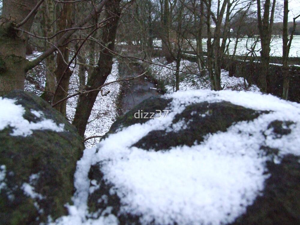 snow by dizz37