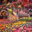 USA. Pennsylvania. Philadelphia Flower Show 2017. by vadim19