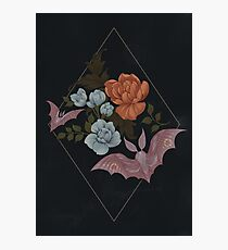 Botanical - moths and night flowers Photographic Print