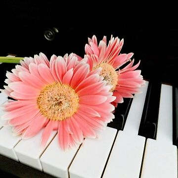 My two loves - piano and flowers! by rsobiera