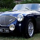 Austin Healey by Larry Varley