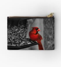 Cardinal at the feeder. Studio Pouch
