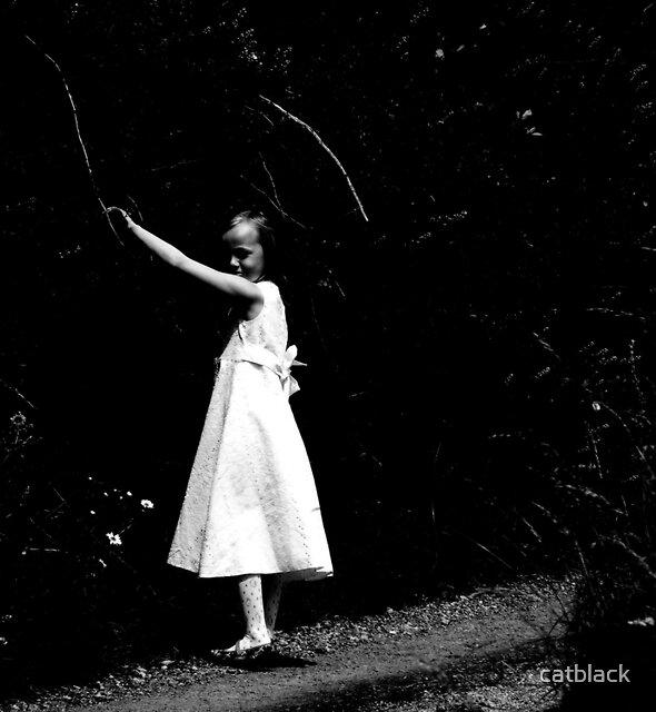 Alice in Wonderland by catblack
