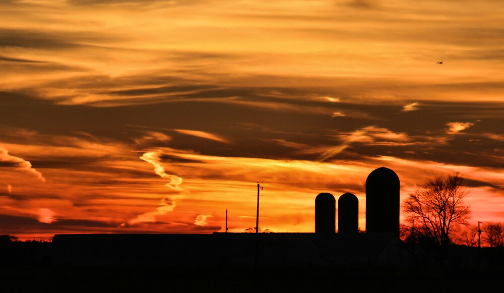 Sunset on the farm! by Ron  Charest