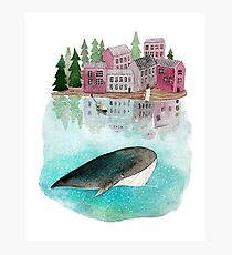 A whale is passing by Photographic Print