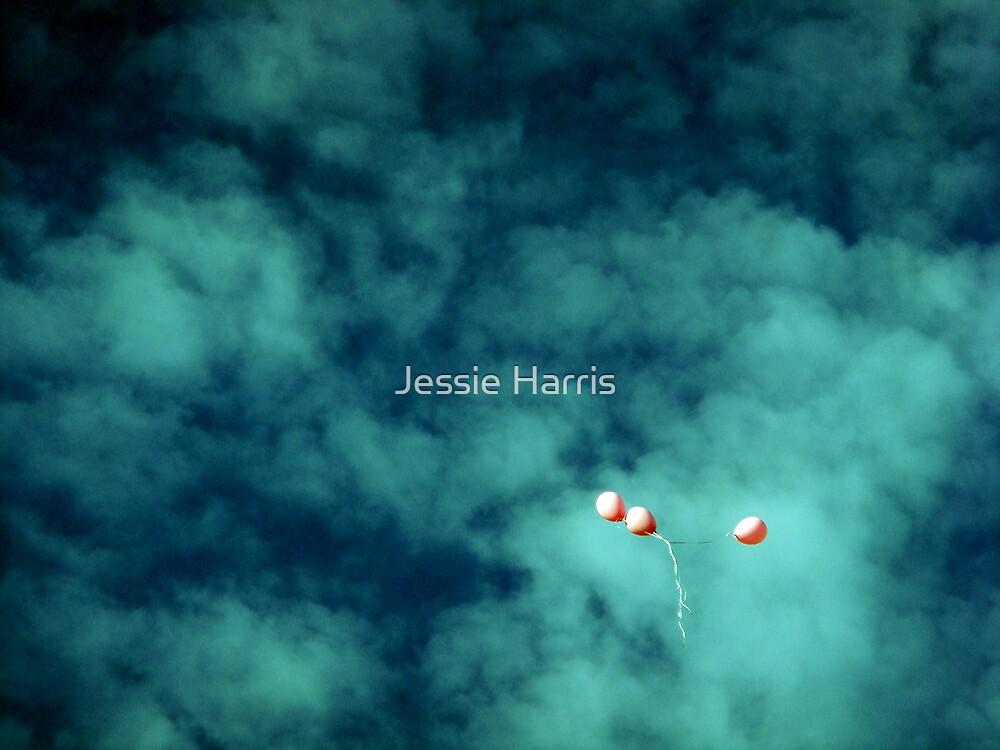 Stray by Jessie Harris
