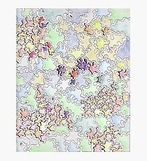 Nature pattern Photographic Print