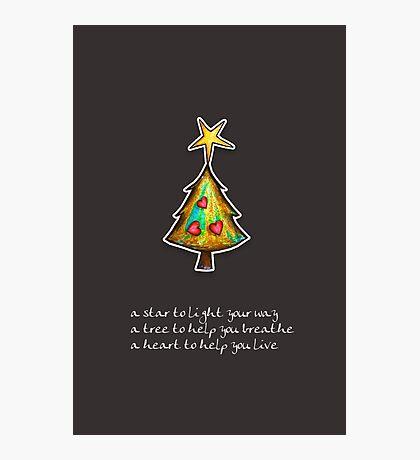 Christmas Card - Chocolate Wish Tree Photographic Print