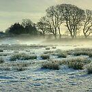 The Frozen Meadow by Jamie  Green