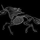 Einhorn-Skelett von Diane LeonardArt