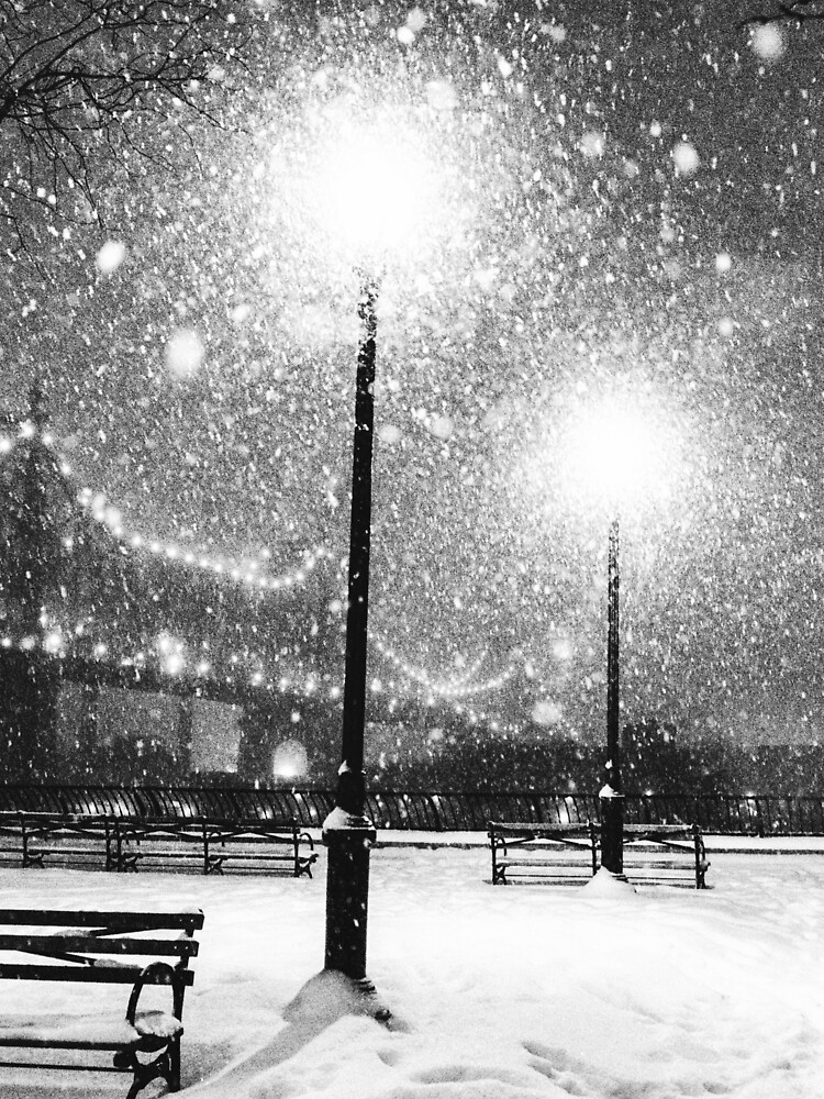 New York City Snow by vgucwaphoto