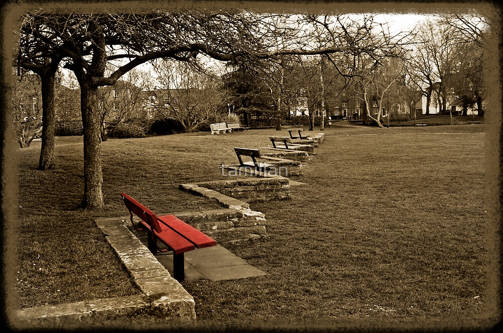 Red bench by tamilian
