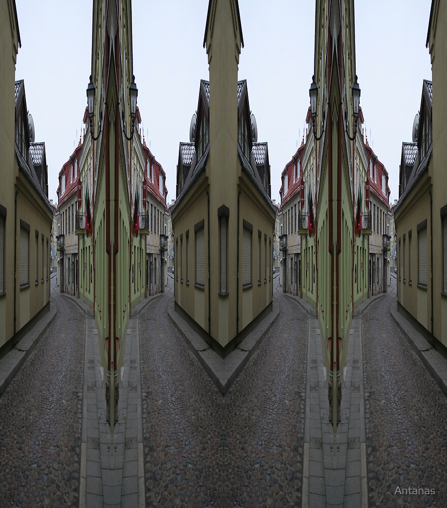 The Old Town Street in Vilnius by Antanas