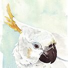 Danny, the Cockatoo 2 by Maree Clarkson