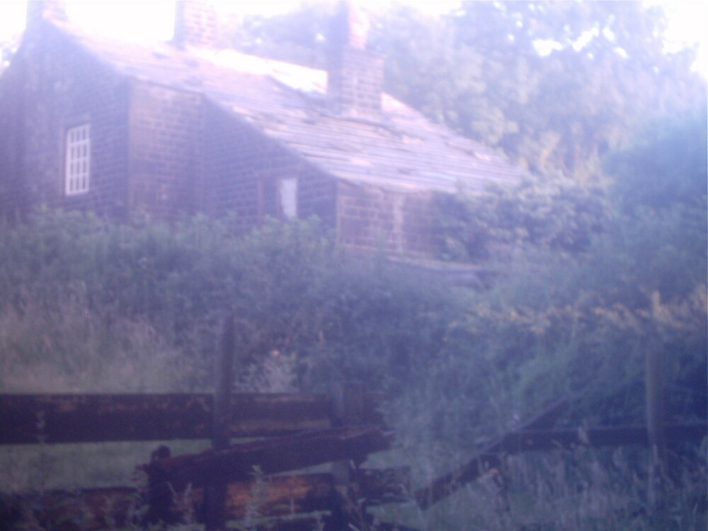 Abandoned Cottage by ElegantMess