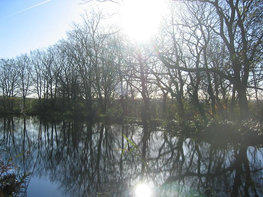 Rochdale Canal by ElegantMess