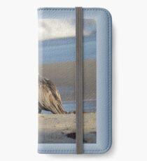 Oceanside Portrait of a Pelican iPhone Wallet/Case/Skin