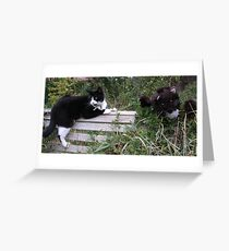 Binky and the Mink Greeting Card