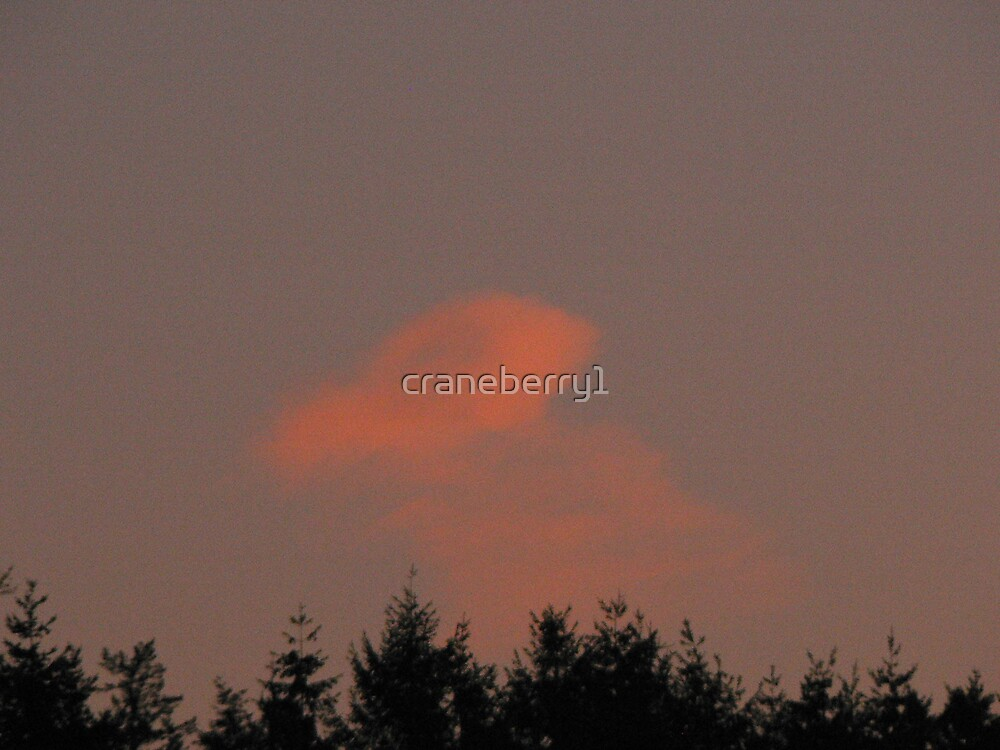 jellyfish cloud by craneberry1