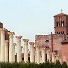 Columns by Tom Gomez