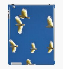 0016 Fly over iPad Case/Skin