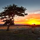 0050 Sunset glow by Hans Kawitzki