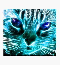 Lightning Cat Photographic Print